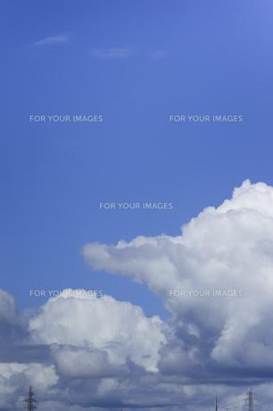 夏の空と入道雲の写真素材 [FYI01160637]