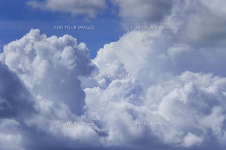 夏の空と入道雲の写真素材 [FYI01160638]