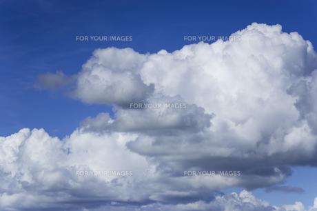 夏の空と入道雲の写真素材 [FYI01160639]