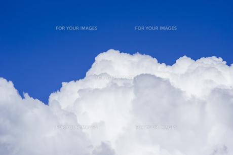 夏の空と入道雲の写真素材 [FYI01160641]