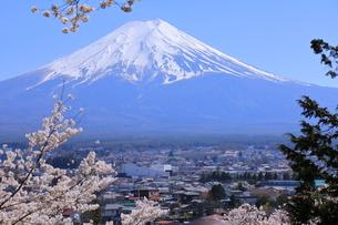 富士山の写真素材 [FYI01161631]