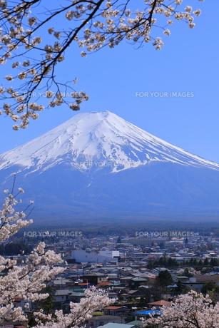 富士山の写真素材 [FYI01161632]