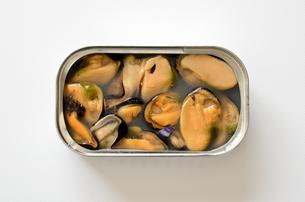 ムール貝の塩水漬けの写真素材 [FYI01161769]