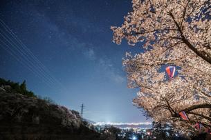 水月公園 夜桜の写真素材 [FYI01161859]