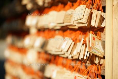正月の明治神宮 絵馬の写真素材 [FYI01162294]