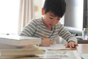 勉強する小学生の写真素材 [FYI01162340]