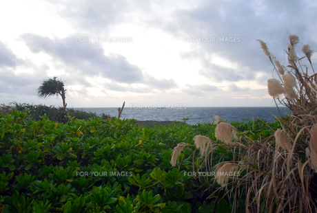 沖縄・残波岬の写真素材 [FYI01162908]