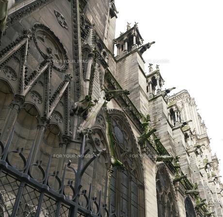 フランスの教会のガーゴイルの写真素材 [FYI01163274]