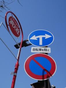 直進禁止の道路標識の写真素材 [FYI01163282]