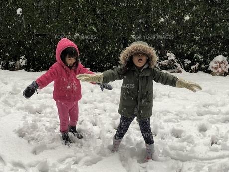 雪遊びをする子供の写真素材 [FYI01163519]