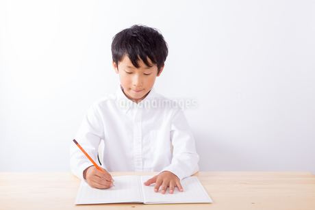 勉強をする少年の写真素材 [FYI01163886]