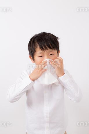 鼻をかむ少年の写真素材 [FYI01164042]