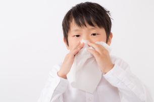 鼻をかむ少年の写真素材 [FYI01164043]