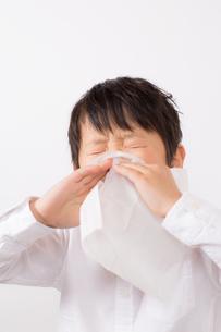 鼻をかむ少年の写真素材 [FYI01164044]