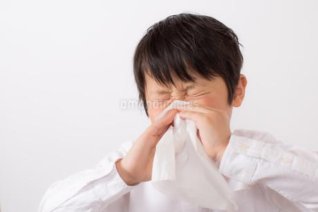 鼻をかむ少年の写真素材 [FYI01164046]
