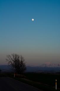 春の夕暮れの空と満月の写真素材 [FYI01164123]