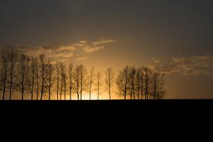 春の夕暮れ 美瑛町の写真素材 [FYI01164141]