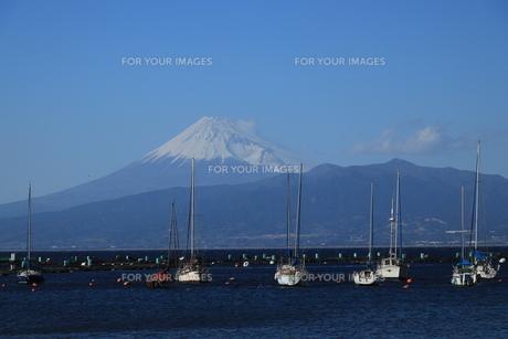 富士山とボートの写真素材 [FYI01164247]