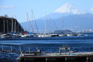 富士山と駿河湾のプレジャーボートの写真素材 [FYI01164248]
