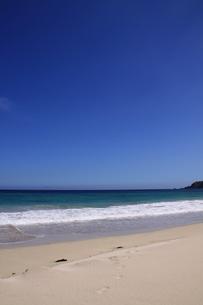 白浜海岸(伊豆、下田)快晴の海辺の写真素材 [FYI01164383]
