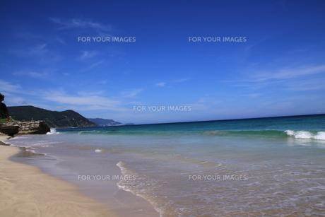 白浜海岸(伊豆、下田)快晴の浜辺の写真素材 [FYI01164384]