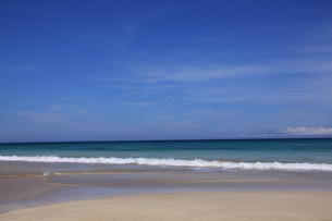 白浜海岸(伊豆、下田)快晴の浜辺の写真素材 [FYI01164386]