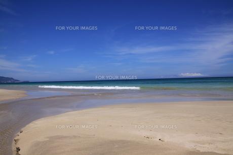 白浜海岸(伊豆、下田)快晴の浜辺の写真素材 [FYI01164387]