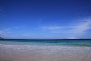 白浜海岸(伊豆、下田)快晴の海の写真素材 [FYI01164388]