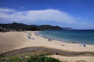 白浜海岸(伊豆、下田)公道から撮影の写真素材 [FYI01164390]