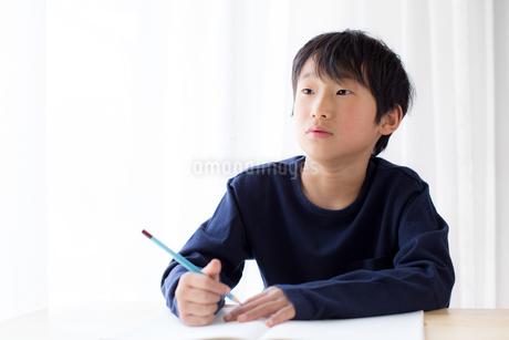 勉強をする少年の写真素材 [FYI01164395]
