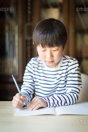 勉強をする少年の写真素材 [FYI01164400]