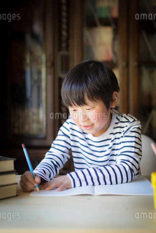 勉強をする少年の写真素材 [FYI01164403]