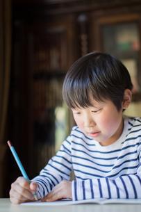 勉強をする少年の写真素材 [FYI01164404]