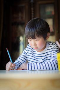 勉強をする少年の写真素材 [FYI01164405]