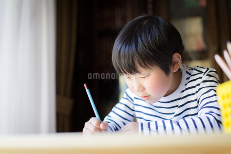 勉強をする少年の写真素材 [FYI01164406]