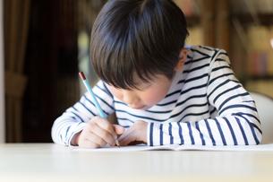 勉強をする少年の写真素材 [FYI01164407]