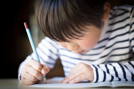 勉強をする少年の写真素材 [FYI01164408]
