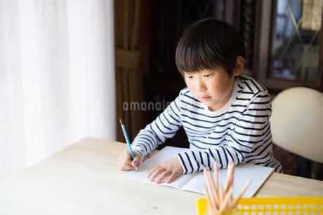 勉強をする少年の写真素材 [FYI01164409]
