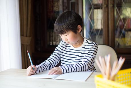 勉強をする少年の写真素材 [FYI01164410]