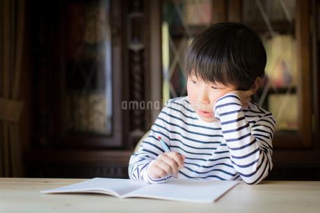 勉強をする少年の写真素材 [FYI01164415]
