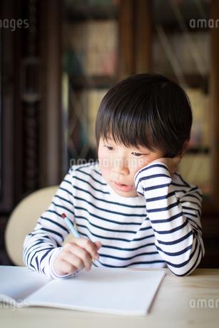 勉強をする少年の写真素材 [FYI01164416]