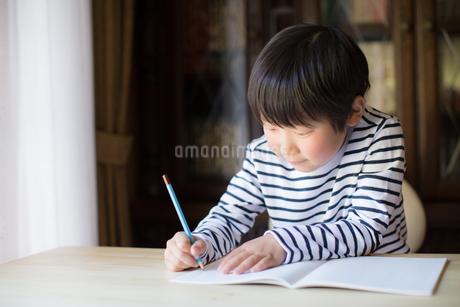 勉強をする少年の写真素材 [FYI01164417]