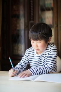 勉強をする少年の写真素材 [FYI01164418]