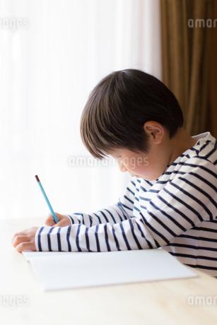 勉強をする少年の写真素材 [FYI01164425]