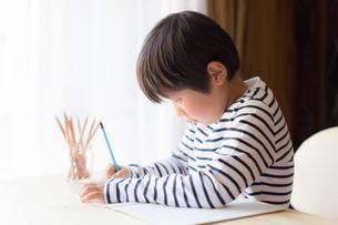 勉強をする少年の写真素材 [FYI01164428]