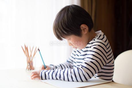 勉強をする少年の写真素材 [FYI01164429]