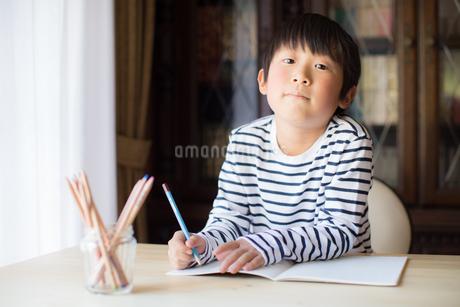 勉強をする少年の写真素材 [FYI01164431]