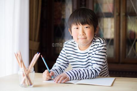 勉強をする少年の写真素材 [FYI01164432]