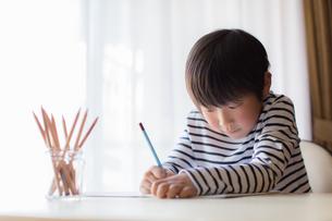 勉強をする少年の写真素材 [FYI01164434]