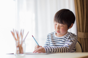勉強をする少年の写真素材 [FYI01164435]